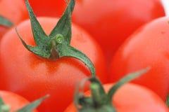 томат предпосылки Стоковое Изображение RF