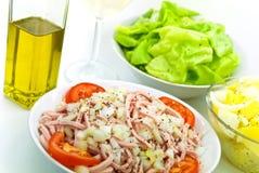 томат салата лука мяса салата лакомки Стоковое Изображение RF