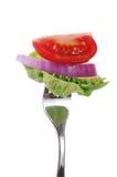 томат салата лука укуса красный Стоковые Изображения RF