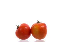 томат свежих фруктов влажный Стоковое Изображение RF