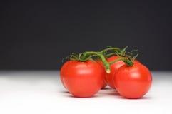томат семьи Стоковое фото RF