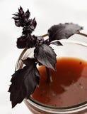 томат сока Стоковое Изображение