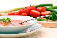 томат супа Стоковое Изображение RF