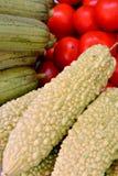 Томат с горькой тыквой дыни и полотенца Стоковое Фото
