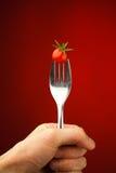 томат удерживания руки вилки вишни стоковое фото rf