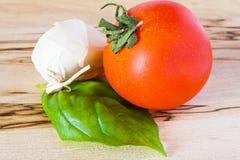 томат чеснока базилика Стоковые Изображения