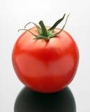 томат Стоковые Фото