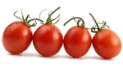 томат Стоковое фото RF
