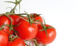 томат 5 Стоковые Изображения RF