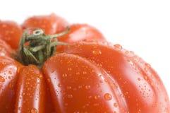 томат heirloom стоковая фотография rf