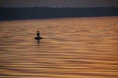 Томбуй моря Стоковое Фото
