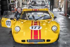 Томми Gilmartin, Шеврон B8, FIA управляет историческими автомобилями спорт Zandvoort стоковые фотографии rf