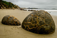 60 тому назад concretions валунов сформировали миллион лет zealand нового otago moeraki septarian сферически стоковая фотография rf