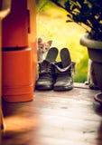Тонизированная съемка милого белого котенка смотря из старого старого ботинка Стоковое Изображение