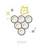 Тонкая линия значки, виноградины иллюстрация вектора