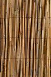 Тонкий бамбук тросточки с предпосылкой провода Стоковая Фотография