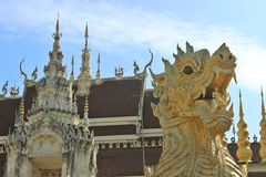 Тонна Wat su Стоковое Фото