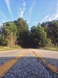 Тоннели дерева Стоковые Фото