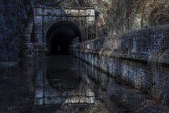 Тоннель лапки лапки в зиме Стоковые Фото