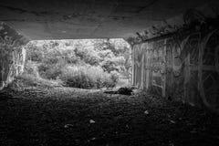 Тоннель граффити Стоковое Фото