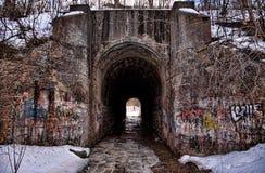 Тоннель зимы Стоковые Изображения