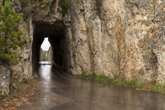 Тоннель игл Стоковое Изображение RF