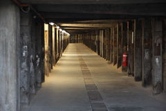 Тоннель ноги собаки в острове какаду, Сиднее Стоковое Фото
