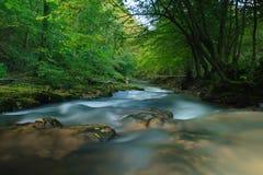 Тоннель реки стоковое фото