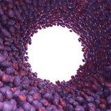 Тоннель Сircular слив Стоковое Фото