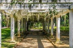 Тоннель цветка - ботанический сад Рио-де-Жанейро, Бразилия Стоковое Изображение