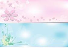 Тон предпосылки 2 цветка Стоковая Фотография