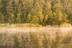 Тон утра красоты на влиянии леса зеркала озера воды Matheson Стоковое Изображение