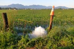 Топить линии питьевой воды стоковые изображения rf