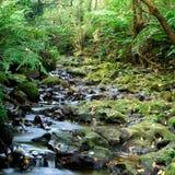 топография реки бака отверстия стоковое фото rf