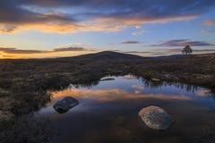 Топь на предпосылке пейзажа горы Стоковое Фото