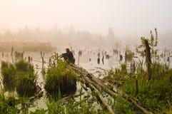 топь утра рыболовства Стоковое Фото
