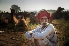 торговец верблюда в pushkar верблюде справедливом Стоковое Изображение