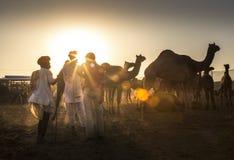 торговец верблюда в pushkar верблюде справедливом Стоковое Изображение RF