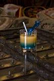 торговец коктеила Стоковая Фотография RF