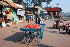 Торговец морковей гуляя вниз с солнечной улицы в Индии стоковые изображения rf
