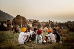 Торговцы верблюда в pushkar верблюде справедливом Стоковое Фото