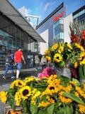 Торговый центр Westfield, Буш чабана, Лондон, Англия, Uni Стоковые Изображения