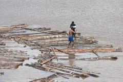 Торговля тимберса на Амазонке, Бразилии стоковые изображения rf