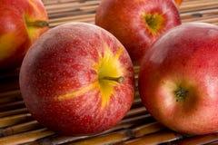 Торжественные яблоки Стоковая Фотография