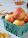 Торжественные яблоки Стоковое Фото