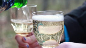 Торжество Люди держа стекла шампанского делая здравицу видеоматериал