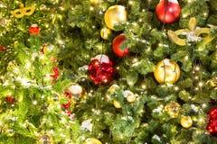 Торжество предпосылки Нового Года и рождества Детали рождественской елки Деталь снятая ветвей рождественской елки с Christm Стоковое Фото