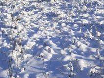 Торошения Snowy над травой в поле Стоковое Изображение