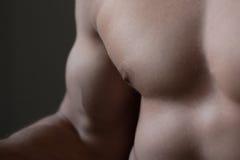 торс крупного плана мышечный Стоковое фото RF