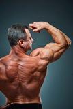Торс привлекательного построителя мужского тела на серой предпосылке стоковые изображения rf